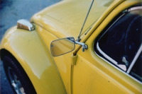 yellow bug two